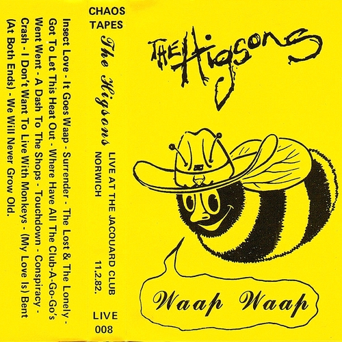 The Higsons - Live at the Jacquard/Live at the Lyceum