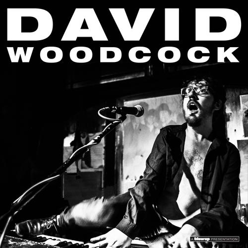David Woodcock - David Woodcock