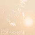Dust and Bone